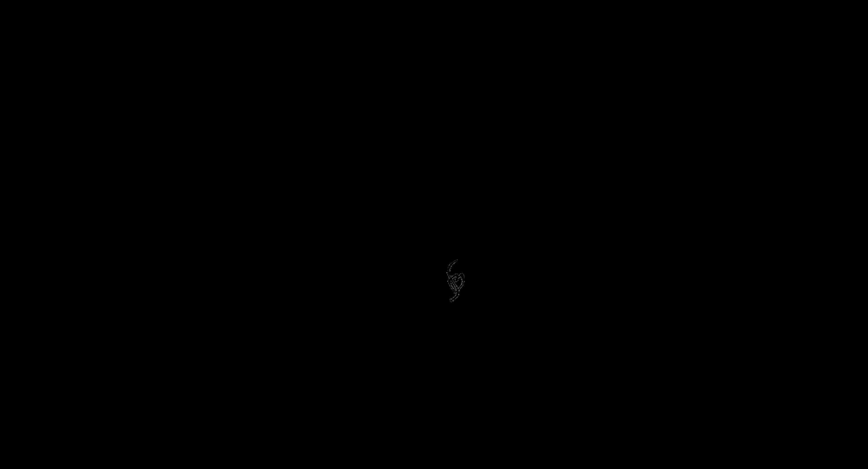 SBC17 Logo Black Allura Transparent